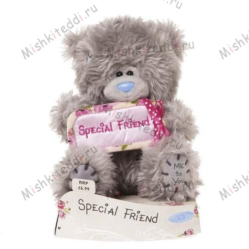Мишка Тедди Me to You 10 см с надписью Special Friend - Special Friend Banner Me to You Bear G01W1970 160 Special Friend Banner Me to You Bear