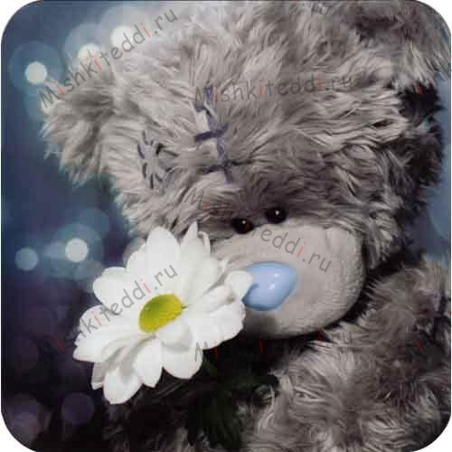 Bear With White Flower Me to You Bear Card Bear With White Flower Me to You Bear Card