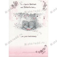 To A Special Brother and Sister-in-Law Me to You Bear Card