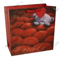 Large Love Softly Drawn Me to You Bear Gift Bag