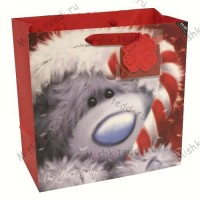 Softly Drawn Winter Gift Bag Large
