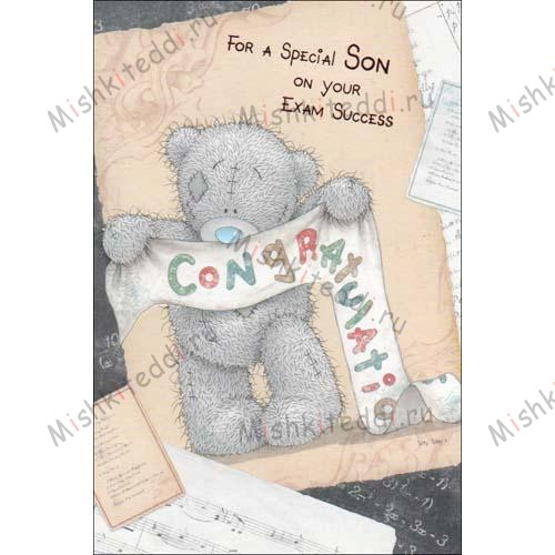 Special Son on Your Exam Success Me To You Bear Card Special Son on Your Exam Success Me To You Bear Card