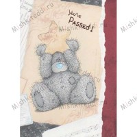 You have Passed! Me to You Bear Card