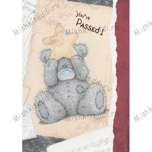 You have Passed! Me to You Bear Card You have Passed! Me to You Bear Card