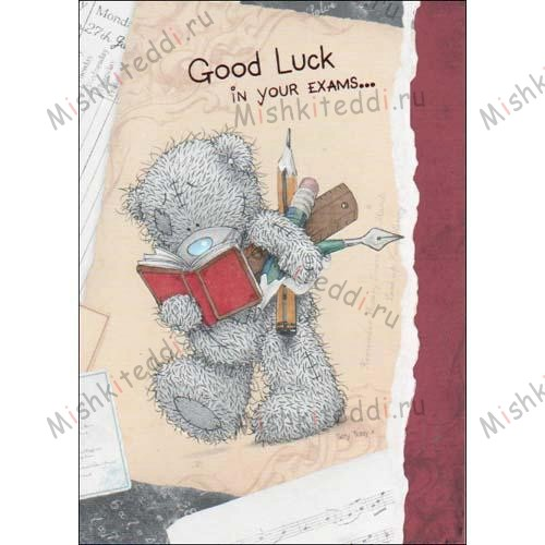 Good Luck in your Exams Me to You Bear Card Good Luck in your Exams Me to You Bear Card