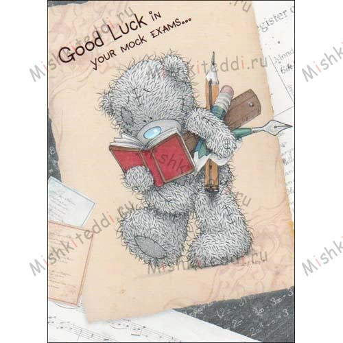 Good Luck in your Mock Exams Me to You Bear Card Good Luck in your Mock Exams Me to You Bear Card