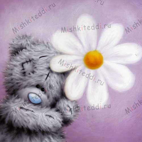 Bear with Daisy Me to You Bear Card Bear with Daisy Me to You Bear Card