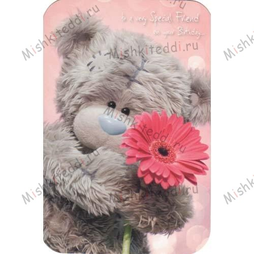 Special Friend Birthday Me to You Bear Card Special Friend Birthday Me to You Bear Card