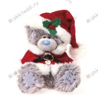 Мишка Тедди Me to You рождественский - Santa Me to You Bear  G01W1922 88